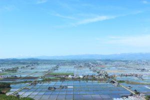 北海道東川町の鏡面水田